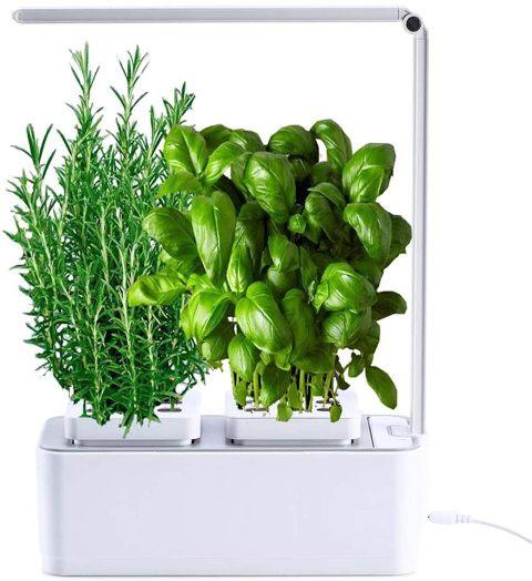 Smart Garden Huerto de Interior